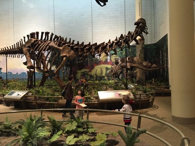 NH-Dino Museum